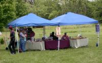 <h2>Vendor's Tents at Mantle Rock 2
