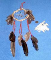 <h2>Dream Catcher 1