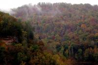 <h2>Foggy Big South Fork River Highlands