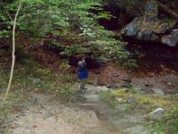 <h2>Wahiya Looking at The Waterfall's Pool 1