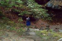 <h2>Wahiya Looking at The Waterfall's Pool 2